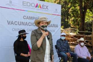 APOYA GEM CON VACUNACIÓN A GANADO BOVINO EN LA ZONA DE TIERRA CALIENTE. 1