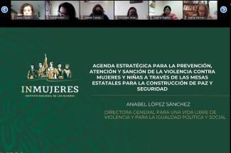 REFRENDAN COMPROMISO DEL #GEM EN SESIÓN VIRTUAL DE INMUJERES. 1